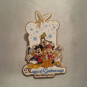 WDW Magical Gatherings pin