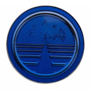 Epcot 35th Anniversary Horizons pin