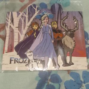 Frozen gang pin pin