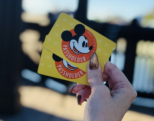 Annual Passes - My Initial Thoughts