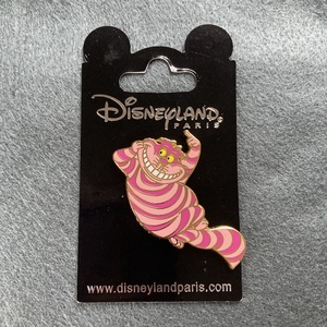 DLP - Cheshire Cat pointing pin