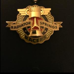 Piston cup  pin