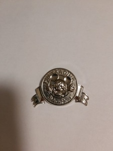 Pin Trading Logo Disney Parks Silver pin